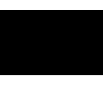Drake's Deli logo